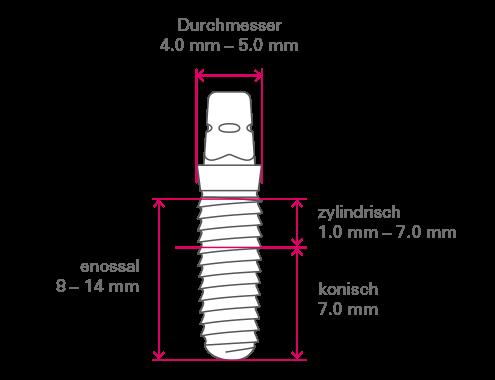 Der konische Bereich im enossalen Teil ist unabhängig von Implantatdurchmesser und Implantatlänge immer 7.0 mm lang